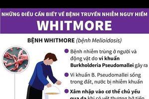 Tăng cường phòng, chống bệnh Whitmore