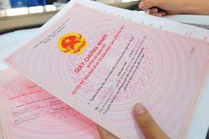 TP. Hồ Chí Minh chia 2 loại dự án chung cư để cấp sổ hồng
