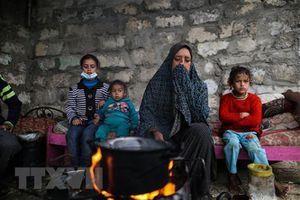 Điện mừng nhân Ngày Quốc tế đoàn kết với nhân dân Palestine của LHQ