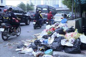 Thực thi Luật Bảo vệ môi trường (sửa đổi) - Bài 1: Lộ trình phân loại và 'cân' rác