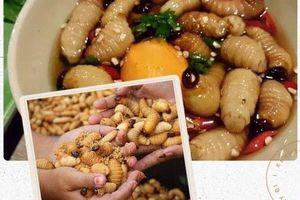 8 loại đặc sản 'nhúc nhích' ở Việt Nam, ăn một lần nhớ mãi cả đời