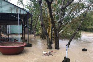Khánh Hòa: Bốn người chết, một người mất tích do mưa lớn