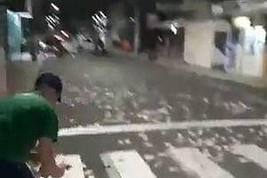 Cướp ngân hàng ở Brazil, tiền rơi vãi khắp đường phố