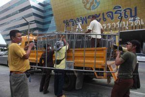 Tòa Hiến pháp Thái Lan sắp ra phán quyết, thủ tướng có thể mất chức