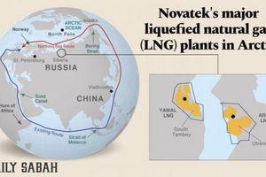 Nga sẽ trở thành 'ông hoàng' ngành năng lượng hậu Covid-19?