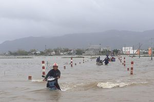 Mưa lớn gây ngập lụt nhiều vùng trũng thấp tại Bình Định