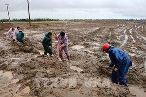 Quảng Trị hàng chục nghìn hộ thiếu nước sinh hoạt sau lũ lụt