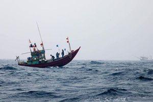 Hành trình 10 ngày đánh bắt xa bờ ngoài khơi vịnh Bắc Bộ