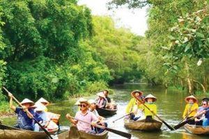 Du lịch nông nghiệp: Lối mở bền vững cho kinh tế du lịch Đồng Tháp