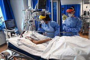 COVID-19 có dập tắt dịch cúm tại châu Âu trong mùa Đông này?
