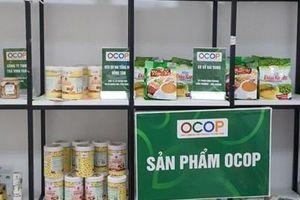 Kết nối tiêu thụ nông sản và sản phẩm OCOP tại Hà Nội