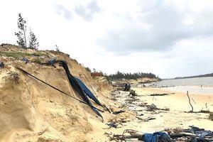 Quảng Nam: Bờ biển xã đảo Tam Hải tiếp tục bị sạt lở, xâm thực sâu