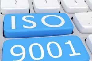 Tăng doanh thu 25% nhờ áp dụng hệ thống quản lý chất lượng theo tiêu chuẩn ISO 9001