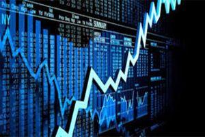 Cổ phiếu CTP tăng sốc giảm sâu, bị thao túng giá