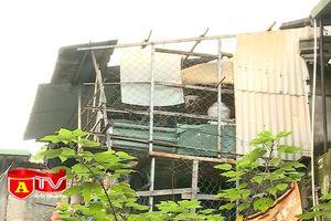 Lực lượng 141 bắt giữ đối tượng tàng trữ ma túy