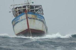 Hải quân cứu nạn và sửa chữa 2 tàu cá trên biển