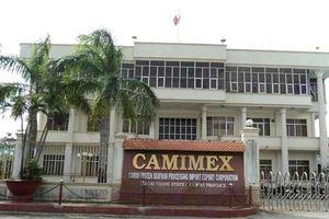 KB Securities vừa mua vào cổ phiếu Camimex Group (CMX)