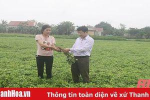 Thị xã Nghi Sơn nâng cao chất lượng đội ngũ cán bộ cơ sở