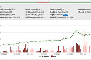 Viettel 'ế' hơn 3,3 triệu cổ phiếu CTR