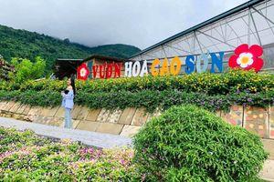 Ngắm hoa trên đại ngàn Cao Sơn