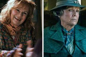 15 diễn viên phụ của Harry Potter: Ngày ấy - bây giờ