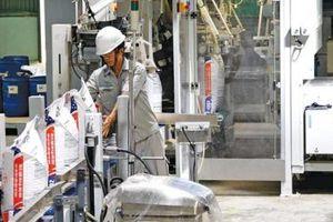 Thị trường thức ăn chăn nuôi Việt Nam: Nhà đầu tư ngoại tăng tốc xây nhà máy mới