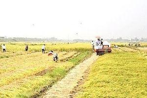 4 quận nội thành Hà Nội hỗ trợ 5 huyện khó khăn trong xây dựng nông thôn mới