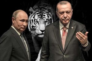 Nga-Thổ 'vỗ ngực' chiến thắng, ai bị coi là 'hổ không nanh'?