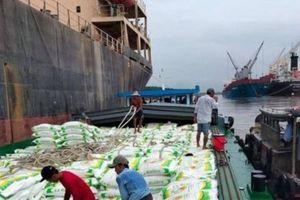 Tiềm năng lớn kết nối ASEAN qua tuyến vận tải thủy Việt Nam - Campuchia