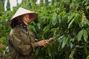 VCSF 2020: Nestlé Việt Nam cam kết 'một tương lai không rác thải'