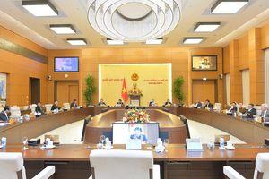 Kỳ họp thứ 11 của Quốc hội dự kiến khai mạc vào ngày 24-3-2021