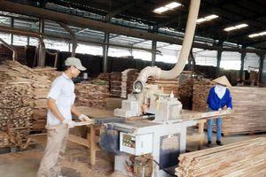 Thái Bình: Triển khai đồng bộ hoạt động khuyến công