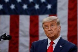 Thêm diễn biến có lợi cho TT Trump: Hàng trăm thành viên Quốc hội Mỹ ủng hộ vụ kiện ở Texas
