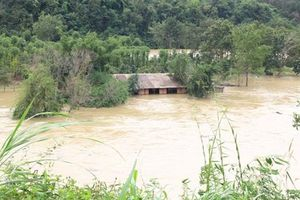 Đắk Nông bàn phương án hỗ trợ do thủy điện xả lũ