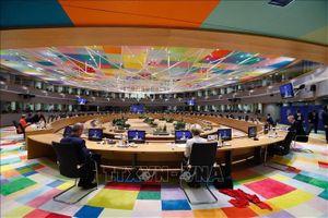 Hành trang trên chặng đường dài của EU