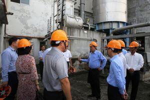 Phó Thủ tướng Thường trực chủ trì họp về xử lý dự án Nhà máy Bột giấy Phương Nam