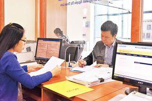 Sẵn sàng triển khai đề án thí điểm quản lý theo mô hình chính quyền đô thị