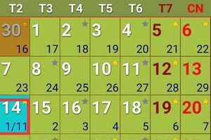 Tranh cãi 'hôm nay là 30/10 hay 1/11 Âm lịch': Chuyên gia lý giải