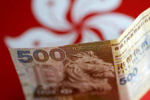 Hong Kong triệt phá đường dây rửa tiền 100 triệu USD