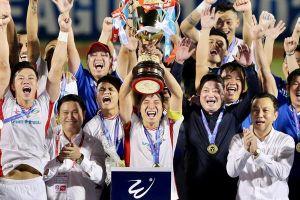 Những điểm nhấn thể thao Việt Nam 2020