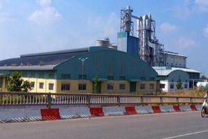 Nghiên cứu bán đấu giá dự án Nhà máy Bột giấy Phương Nam