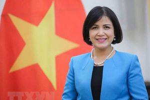 Việt Nam thúc đẩy ASEAN tham gia tích cực tại các tổ chức quốc tế