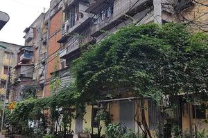 Lợi ích kép từ phát triển vườn đô thị
