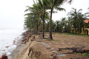 Bờ biển bị sạt lở trầm trọng hơn do thiên tai