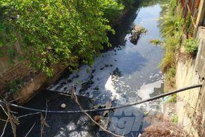 Hơn 1.800 điểm xả thải đổ nước thải vào hệ thống Bắc Hưng Hải