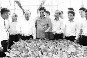 'Thực túc, binh cường': Thời hoàng kim của nông nghiệp