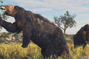 10 loài động vật tuyệt chủng mà các nhà khoa học muốn mang lại sự sống
