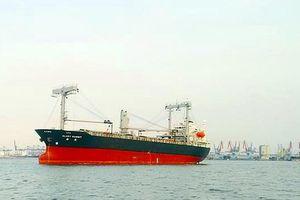 Vụ tàu quốc tịch Panama bị chìm gần đảo Phú Quý: Đã tìm thấy 13 thuyền viên