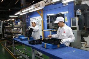 Gom tiếp 890 nghìn cổ phần, Nhựa Hà Nội (NHH) muốn sở hữu trọn vẹn An Cường?