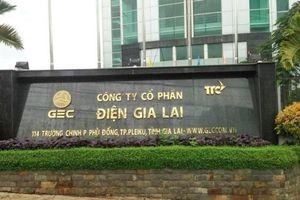 Ban lãnh đạo Điện Gia Lai ồ ạt đăng ký bán cổ phiếu